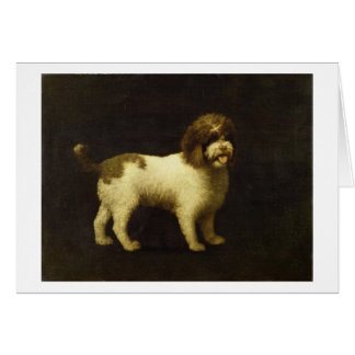 A Water Spaniel, 1769 (oil on canvas) Greeting Card