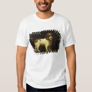 A Water Spaniel, 1769 (oil on canvas) Shirts