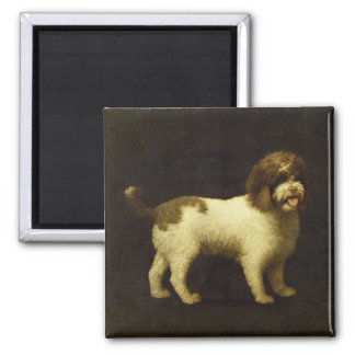 A Water Spaniel, 1769 (oil on canvas) Square Magnet
