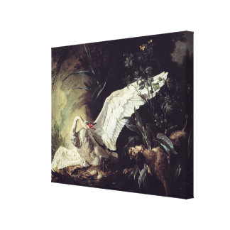 A Water Spaniel Gallery Wrap Canvas
