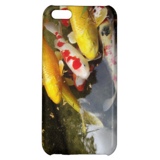 A waterway full of Japanese koi carps Cover For iPhone 5C