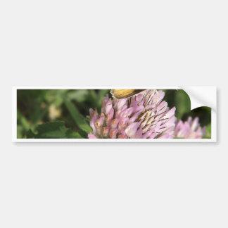A wee moth on a wee flower bumper sticker