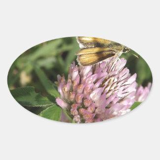 A wee moth on a wee flower oval sticker