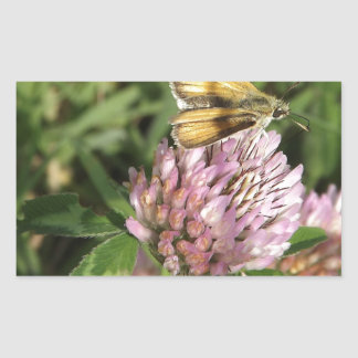 A wee moth on a wee flower sticker