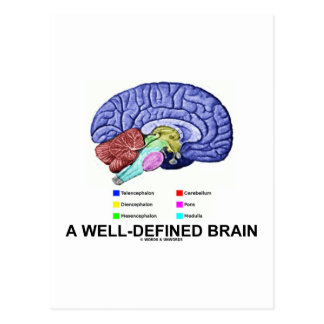A Well-Defined Brain (Anatomical Brain Humor) Post Cards