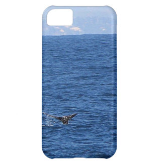 A Whale's Tail iPhone 5C Case