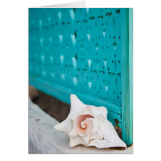 A White And Pink Jamaican Sea Shell Sits Alone Card