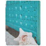 A White And Pink Jamaican Sea Shell Sits Alone iPad Cover