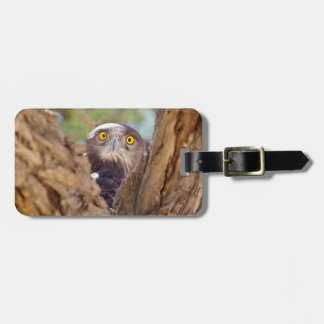 A White-breasted Snake Eagle Luggage Tag