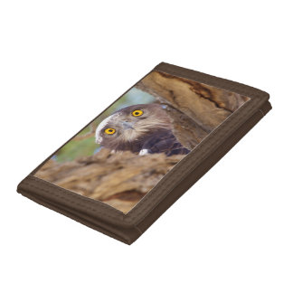 A White-breasted Snake Eagle Tri-fold Wallets