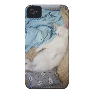A white cat sleeping in a laundry basket, Case-Mate iPhone 4 case