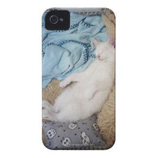 A white cat sleeping in a laundry basket, iPhone 4 covers