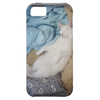 A white cat sleeping in a laundry basket, iPhone 5 case
