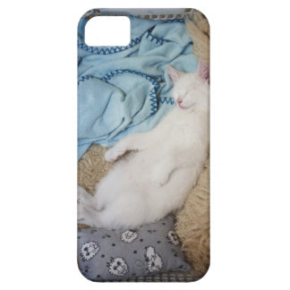 A white cat sleeping in a laundry basket, iPhone 5 covers
