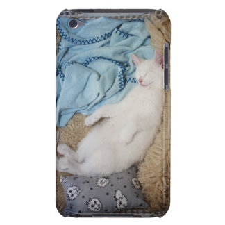 A white cat sleeping in a laundry basket, iPod touch covers