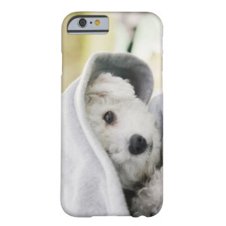 a white dog wearing a hood of shirt barely there iPhone 6 case