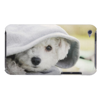 a white dog wearing a hood of shirt barely there iPod cover