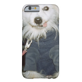 A white dog wearing clothes. barely there iPhone 6 case