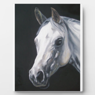 A White Horse Photo Plaques