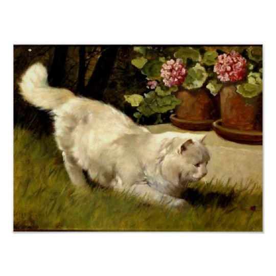 A White Persian Cat Watching a Ladybug Poster