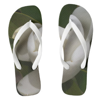 A white southern magnolia flower bud flip flops