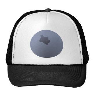A Whole Blueberry Cap