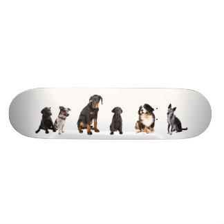 a whole lot of dogs custom skate board