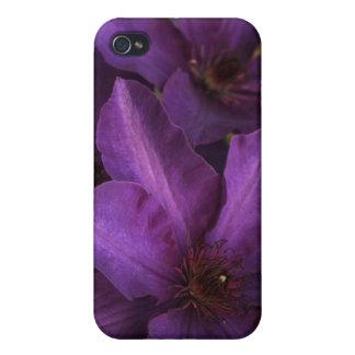 A whole lotta purple iPhone 4 cases