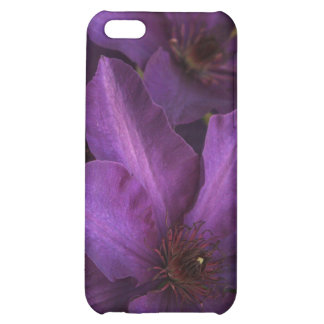 A whole lotta purple iPhone 5C cover