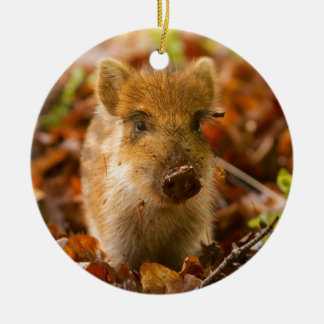 A Wild Boar Piglet Sus Scrofa in the Autumn Leaves Christmas Ornament