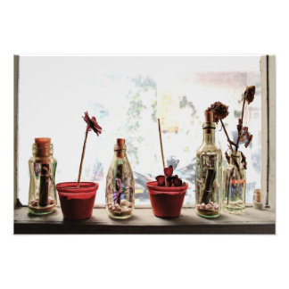 a Window and Flowers - Photo Print