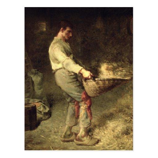 A Winnower, 1866-68 Postcards