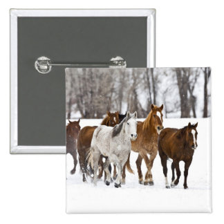 A winter scenic of running horses on The 2 15 Cm Square Badge
