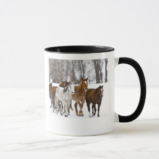 A winter scenic of running horses on The 2 Mug