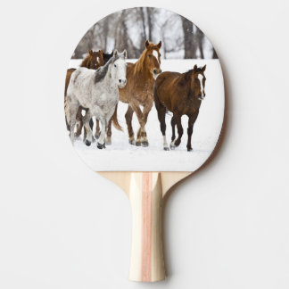 A winter scenic of running horses on The 2 Ping Pong Paddle