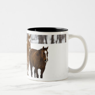 A winter scenic of running horses on The 2 Two-Tone Coffee Mug