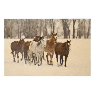 A winter scenic of running horses on The 2 Wood Wall Art