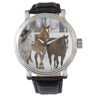 A winter scenic of running horses on The 2 Wrist Watches