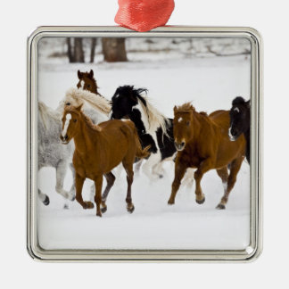 A winter scenic of running horses on The Christmas Ornament