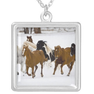 A winter scenic of running horses on The Silver Plated Necklace