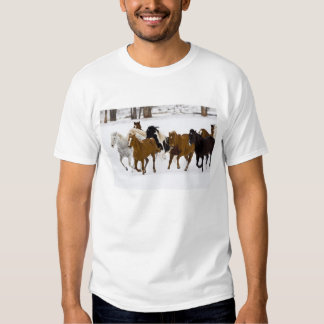 A winter scenic of running horses on The Tee Shirt