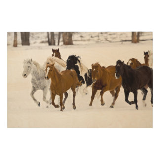 A winter scenic of running horses wood wall decor