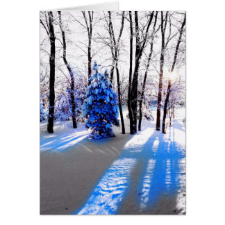 A Winter Solstice/Holiday Card
