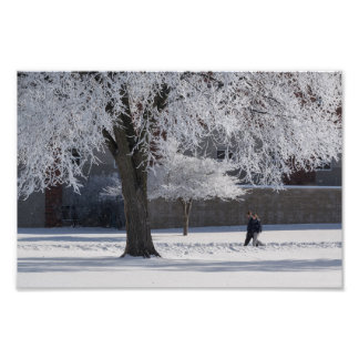 A WINTER WALK by Michelle Diehl Photo Print