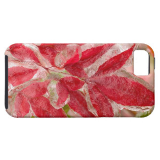 A winters ice storm covering the leaves of iPhone 5 case