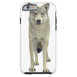 A wolf tough iPhone 6 case