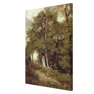 A Wooded Path Canvas Print