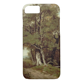 A Wooded Path iPhone 8/7 Case