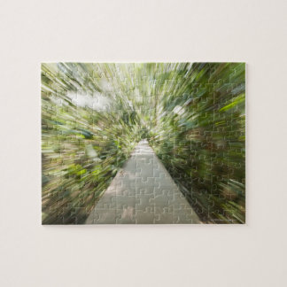 A wooden path through the rainforest in warped jigsaw puzzle