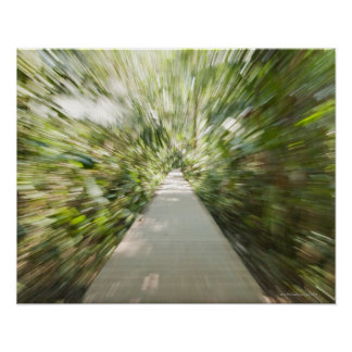 A wooden path through the rainforest in warped poster